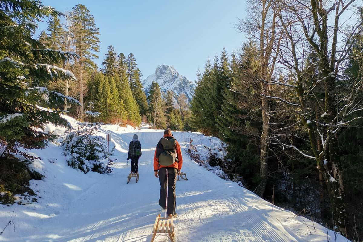 Die längste Naturrodelbahn im Allgäu verläuft am Breitenberg