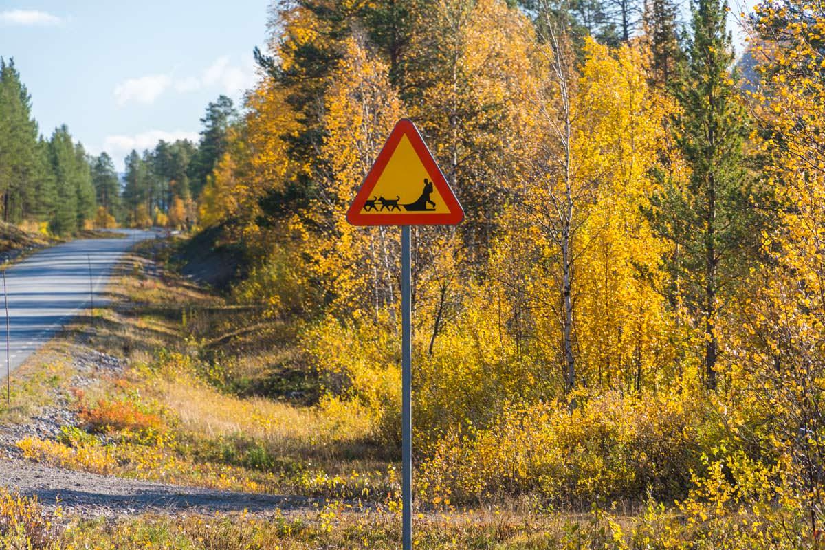 Verkehrsschild mit Hundeschlitten in Lappland