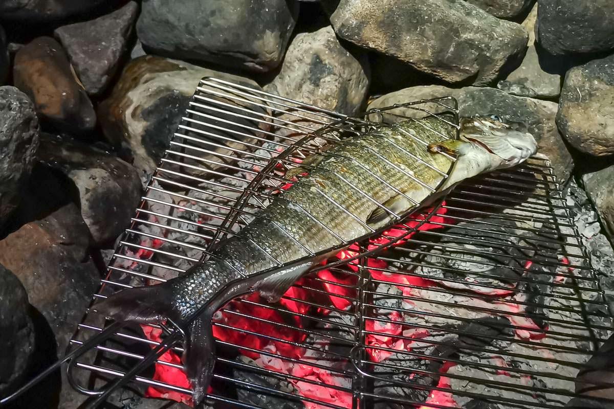 Gegrillter Fisch auf Feuerstelle in Schweden