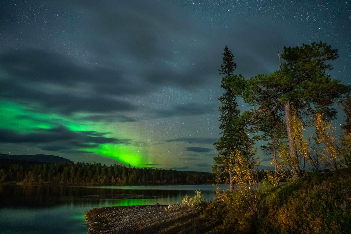 Nordlichter auf der Årrenjarka Halbinsel in Schweden