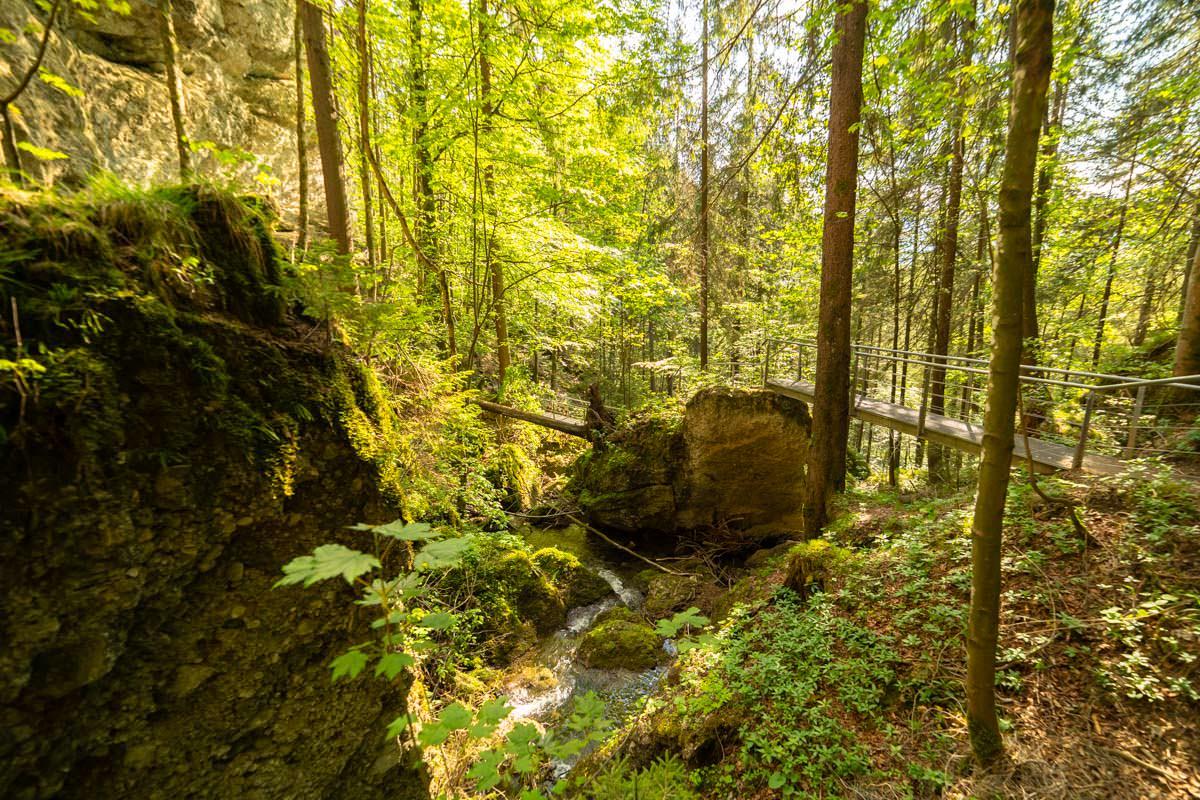 Durch den Tobel am Hinanger Wasserfall verlaufen mehrere Brücken und Treppen