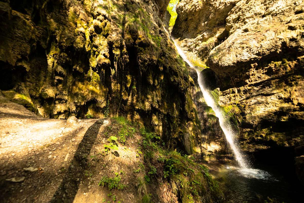Nachmittags scheint die Sonne von hinten in den Tobel und lässt den Hinanger Wasserfall leuchten